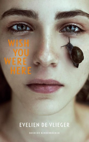 Cover Wish You Were Here